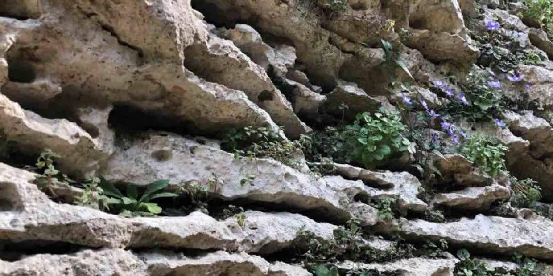 la pietra del finalese